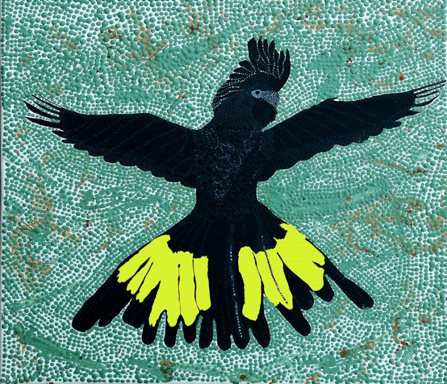Tash-Black-Cockatoo-1.jpg